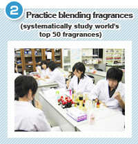 Practice blending fragrances (systematically study world's top 50 fragrances)