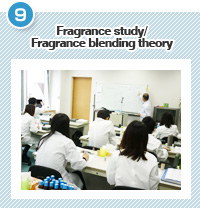 Fragrance study/Fragrance blending theory